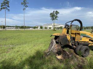 Jacksonville Stump Grinding