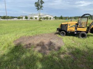 Stump Grinding Jacksonville