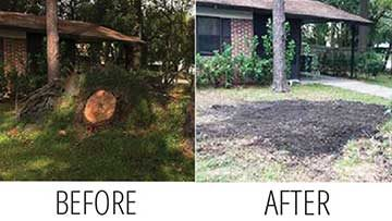 Stump Grinding Tips Featured